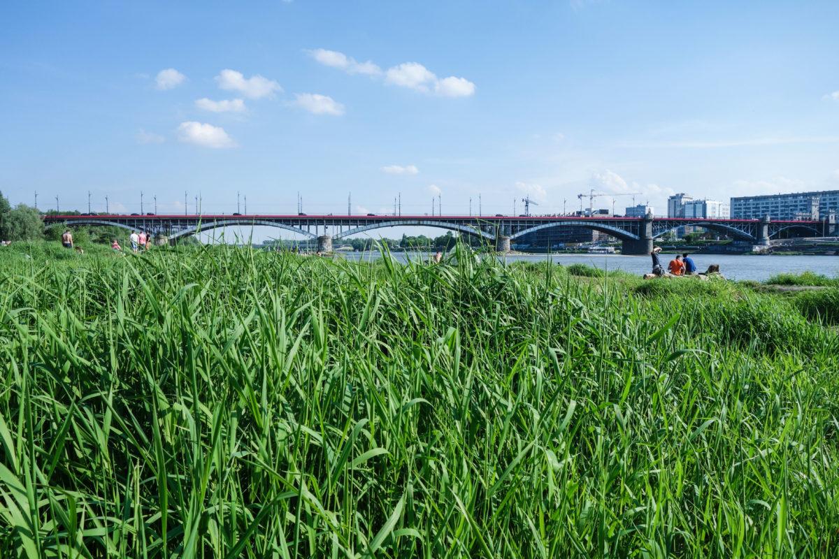 royalpark_warszawa
