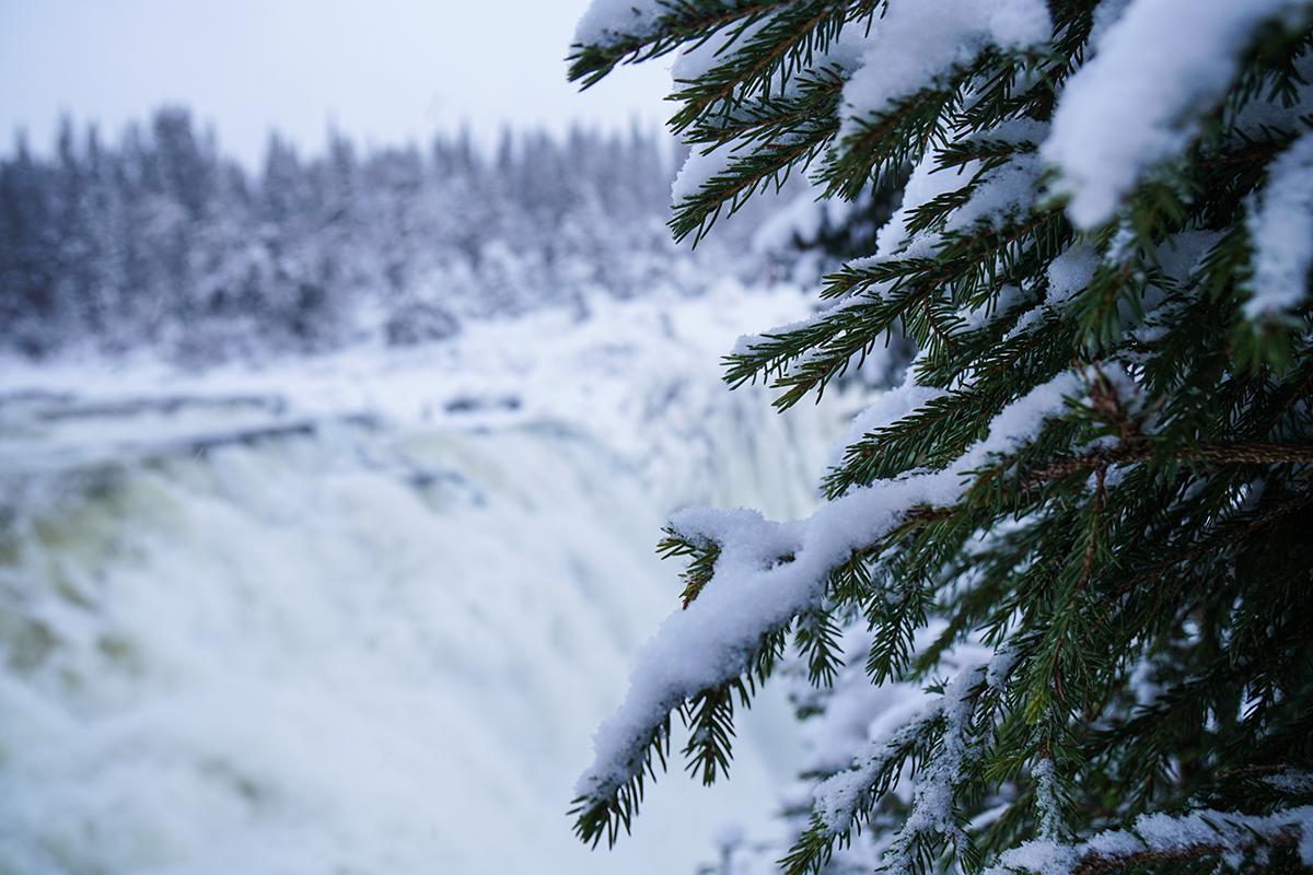 tännforsen sveriges största vattenfall