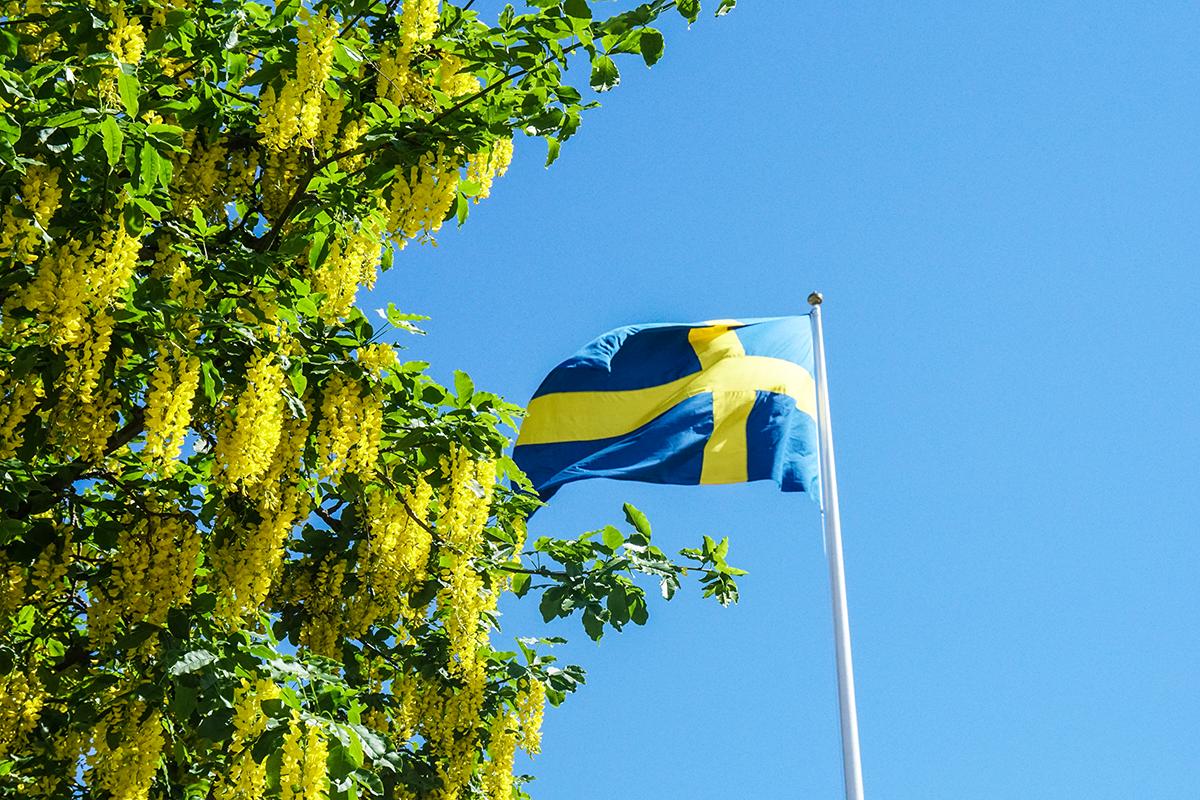 svenska flaggan skolavslutning