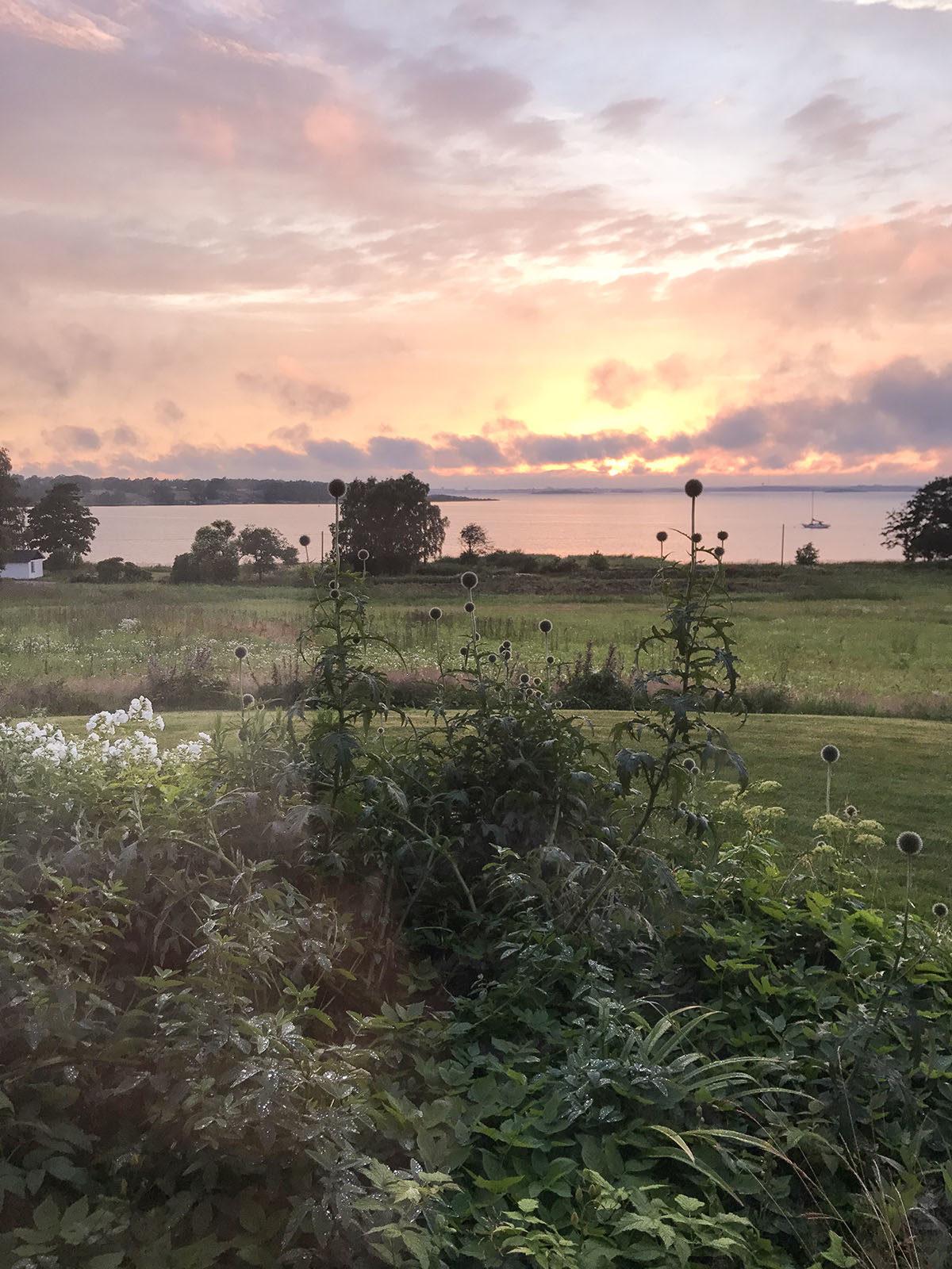 solnedgång sommarö