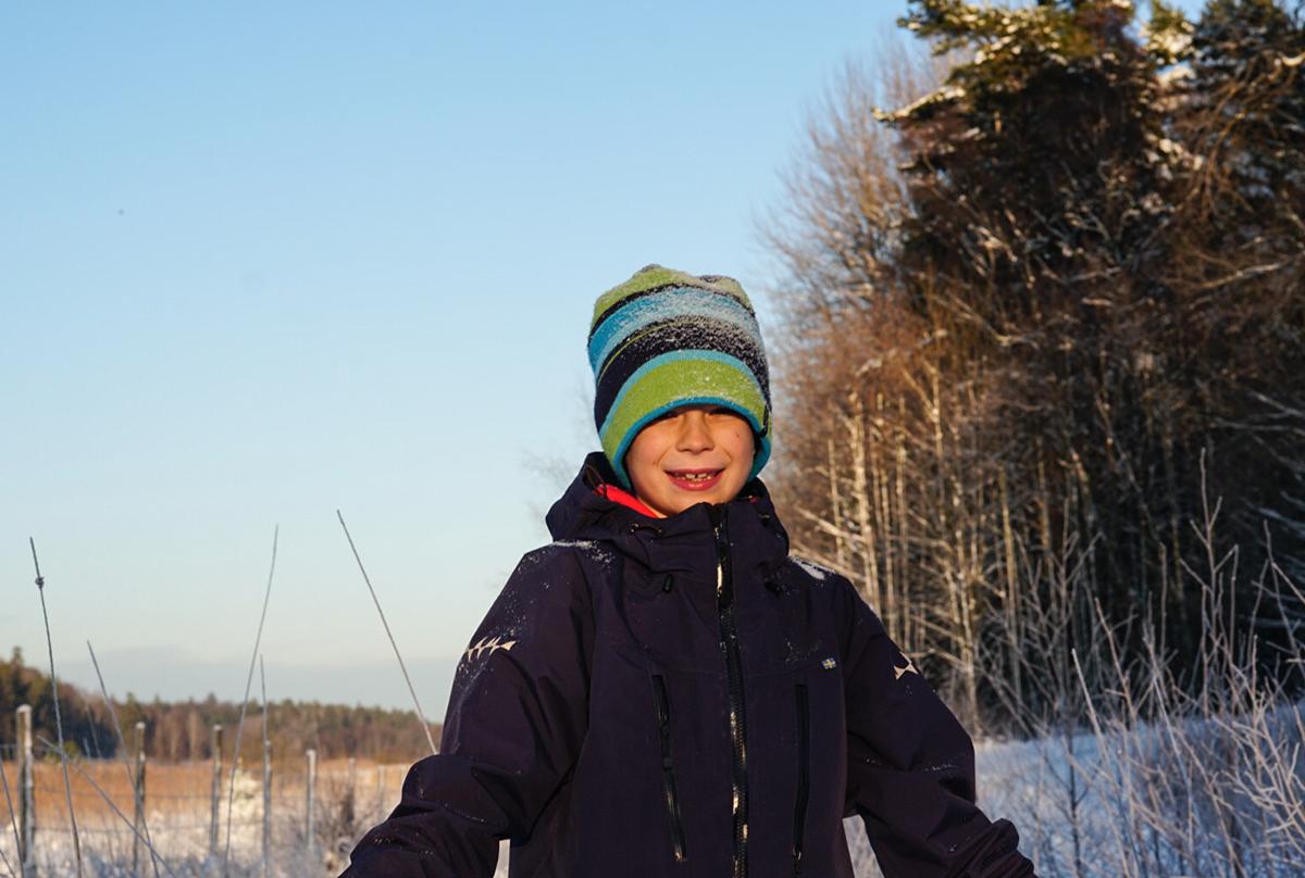 vinter i Nynäshamn