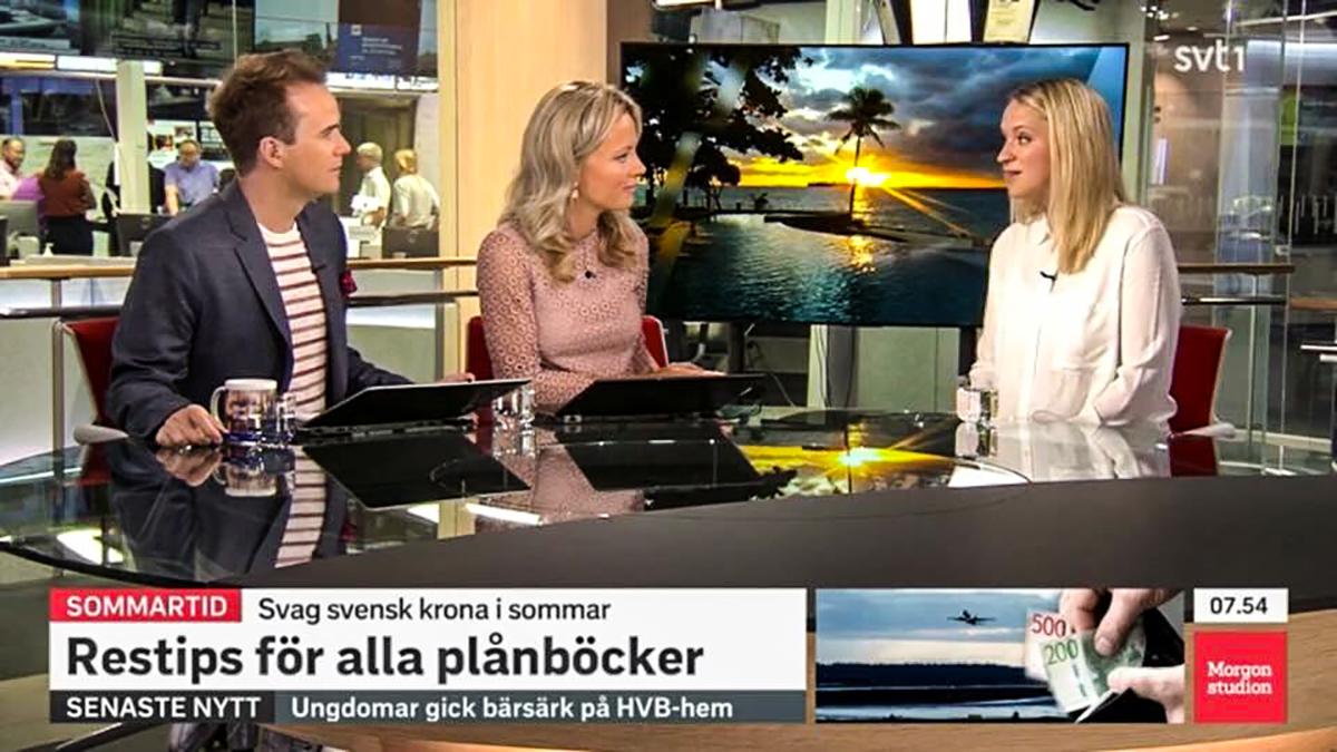 SVT morgonstudion resexpert