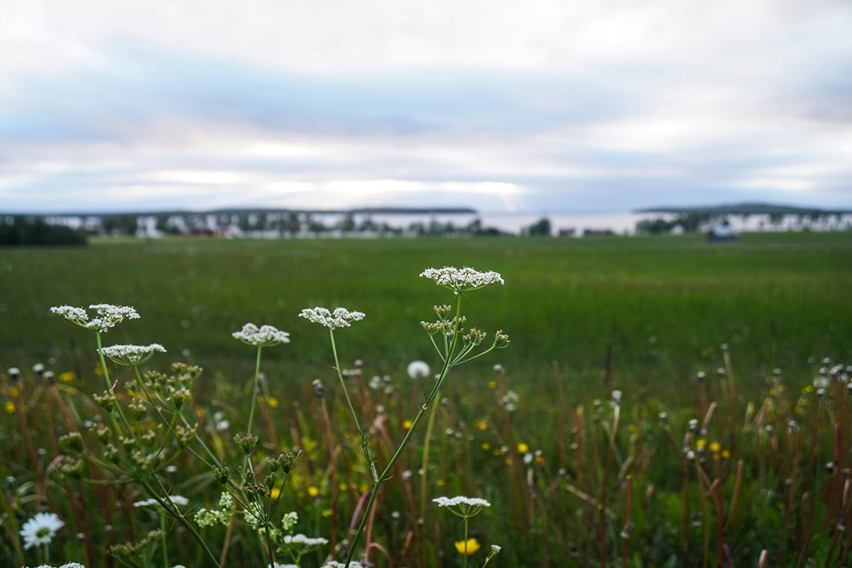 från Åre till Östersund