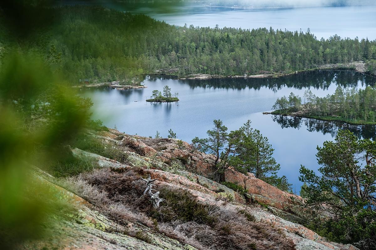 höga kusten Skuleskogens nationalpark