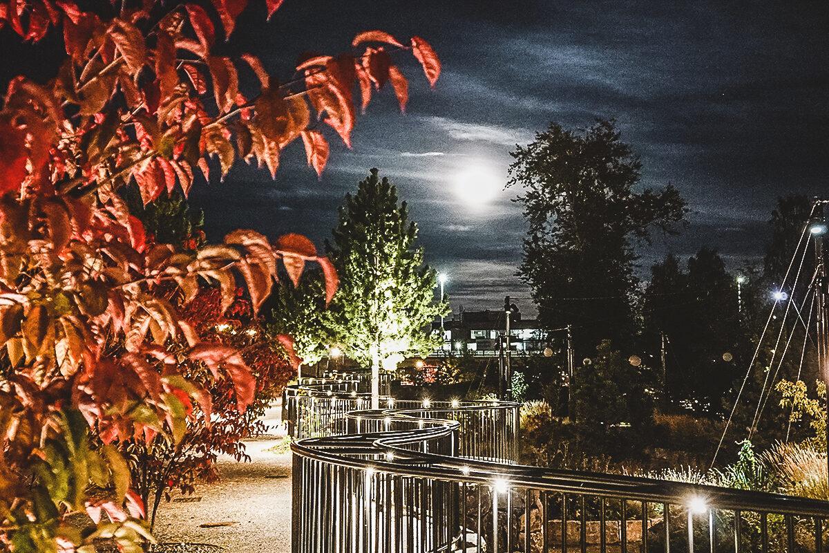 Sveriges bästa höststad Umeå