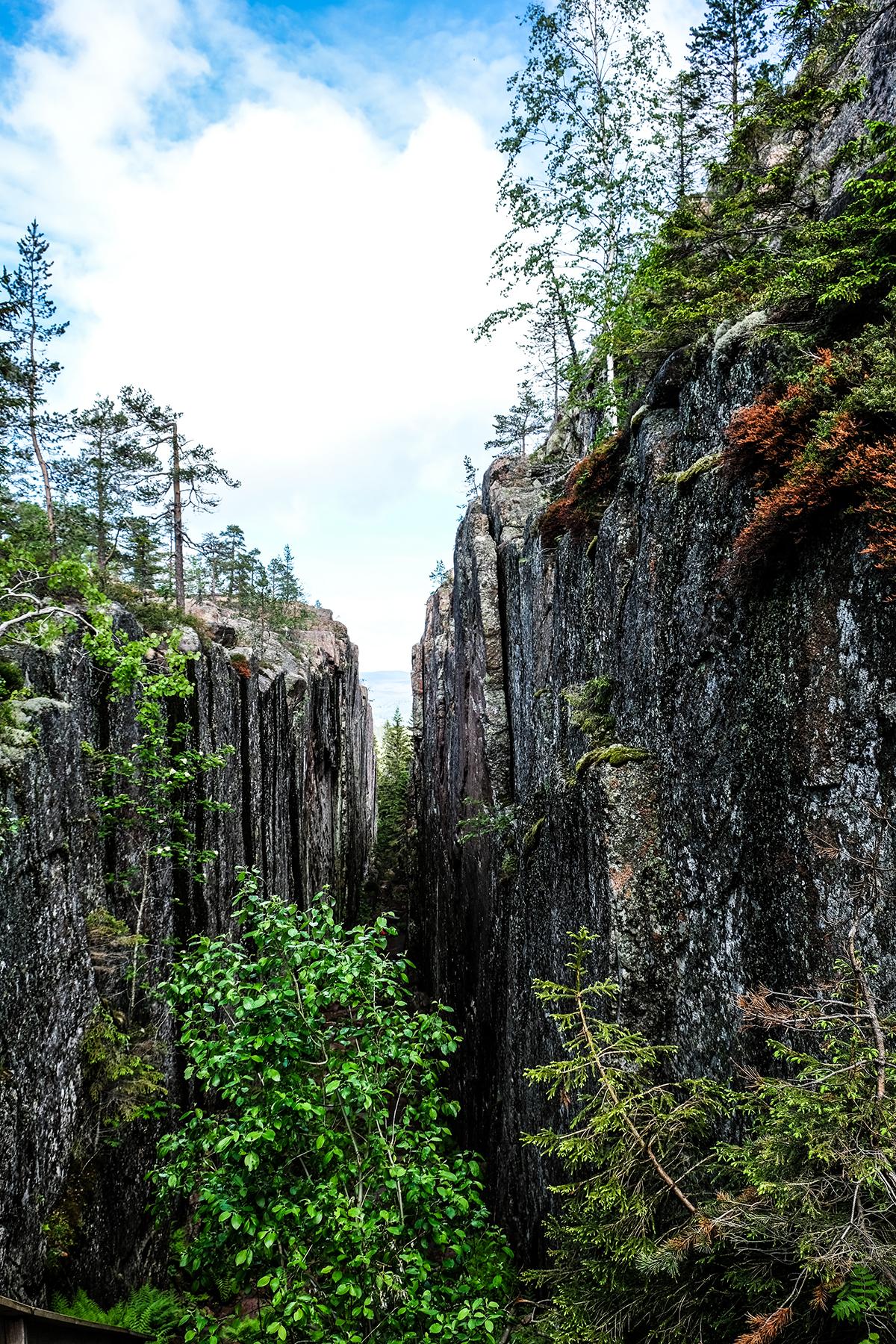 skuleskogens nationalpark höga kusten