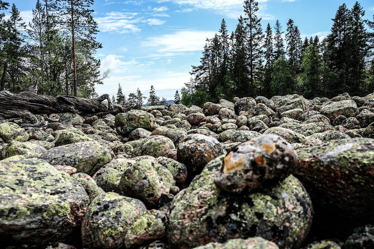 Skuleskogens nationalpark: Sverigemagi vid Höga Kusten
