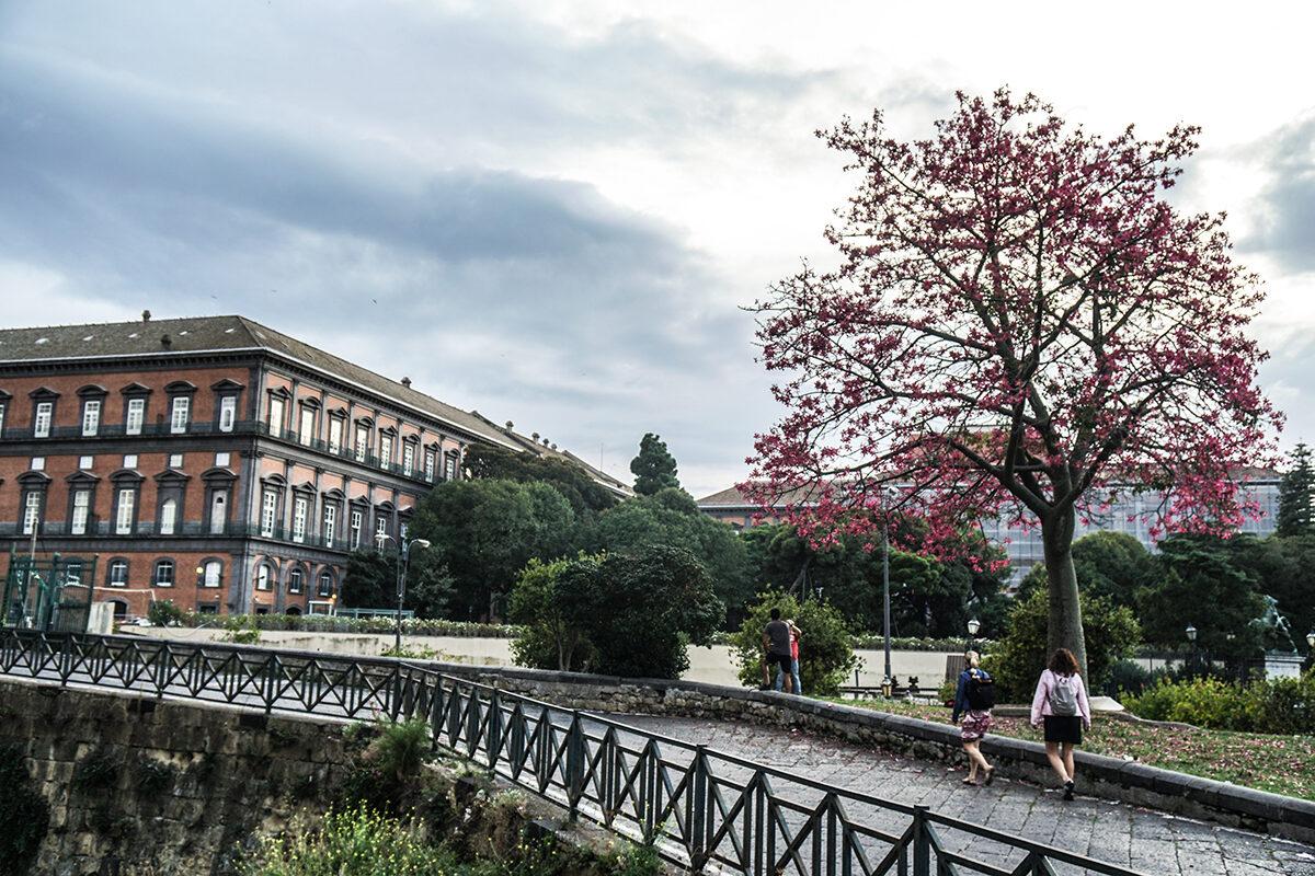 att resa till italien Neapel