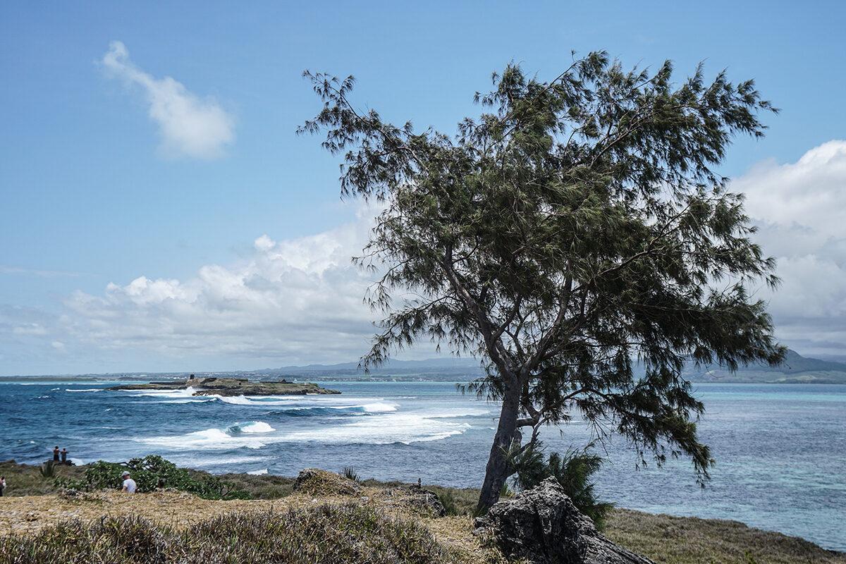 natur på mauritius