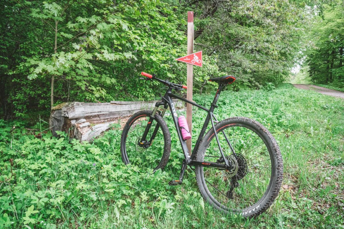 cykla Omberg