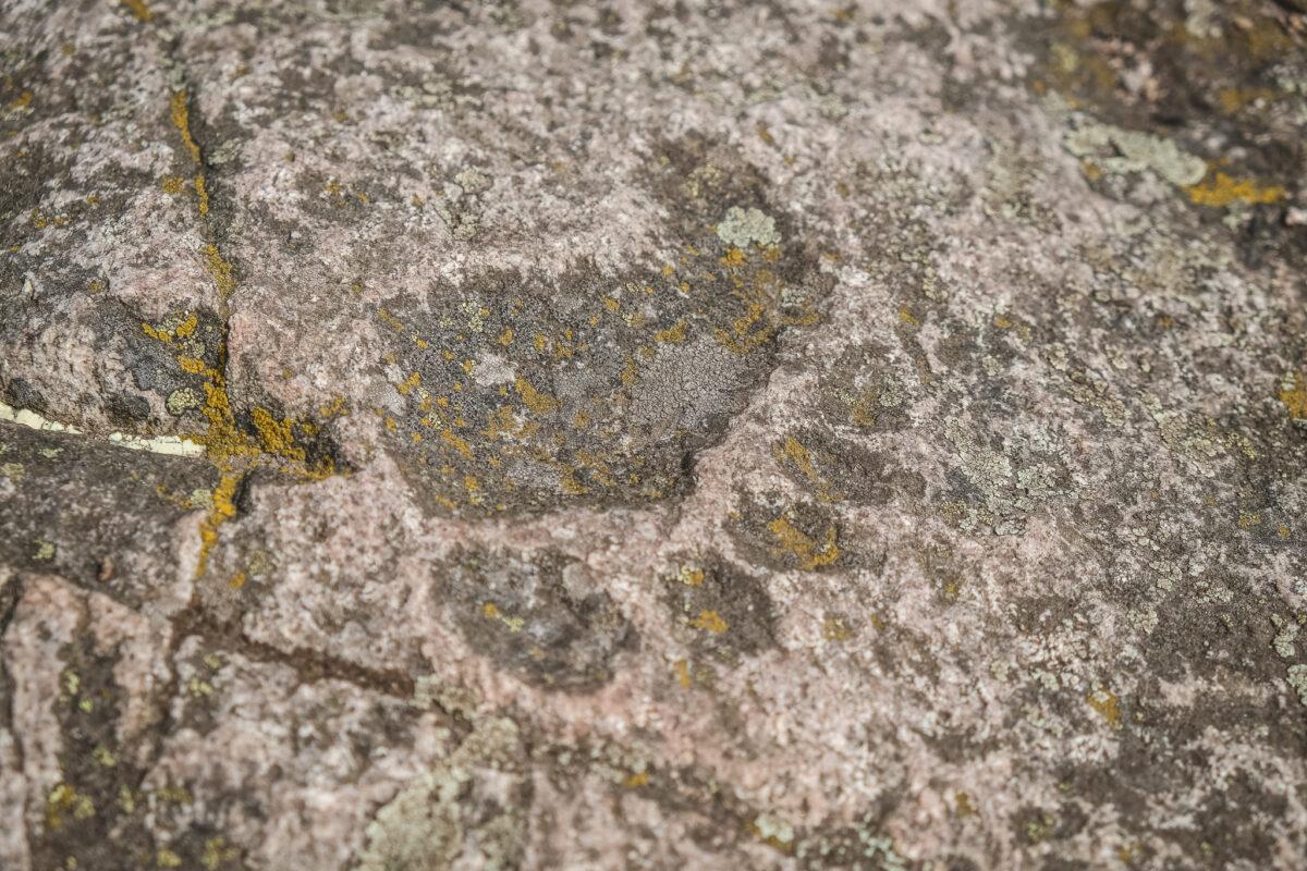 fotspår stenshuvud