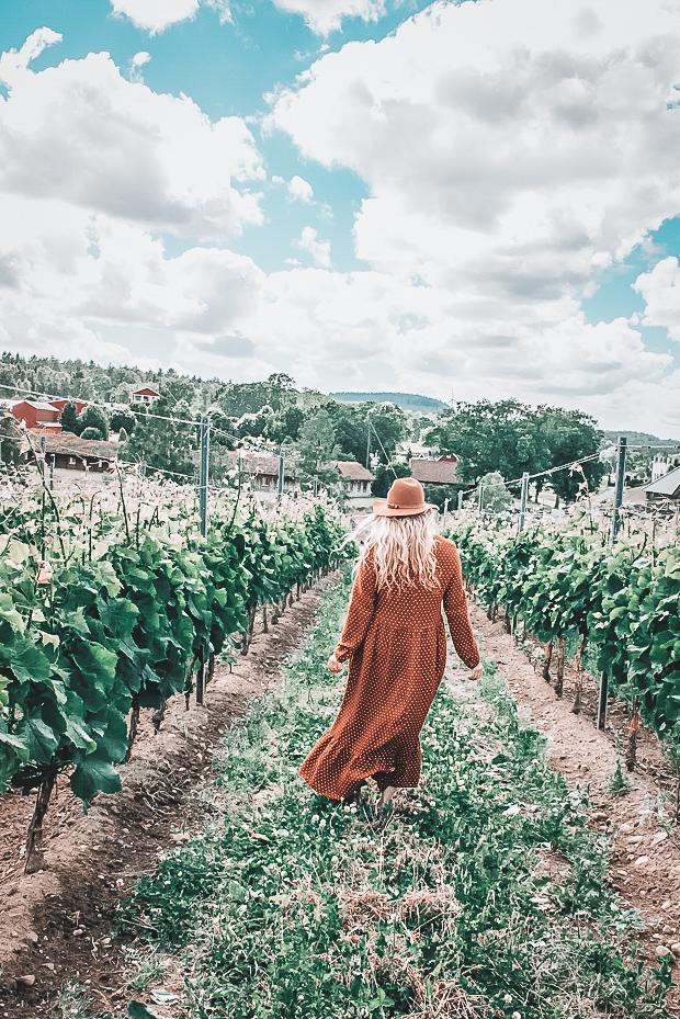 ästads vingård
